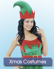 Ladies Xmas Costumes